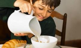 Чим годувати різних по характеру дітей