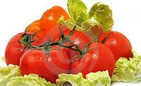 «Капустяні» помідори