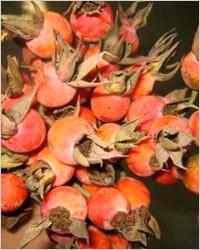 Компот із свіжих плодів шипшини і яблук