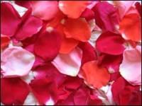 Компот аґрусового з пелюстками троянд
