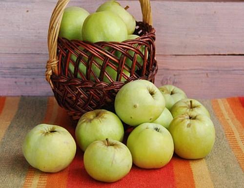 Консервування яблук: соуси, приправи і закуски