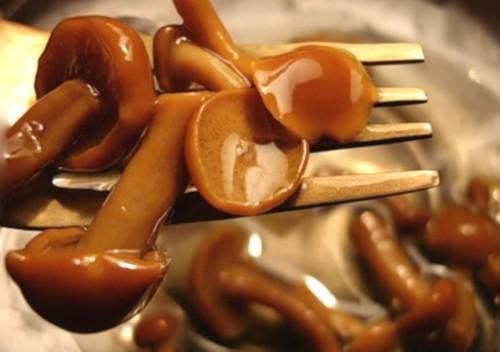 Консервуємо маслюки: мариновані та солоні гриби на зиму