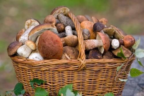Мариновані гриби: 5 кращих рецептів