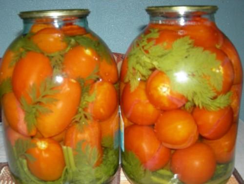 Помідори, мариновані з морквяної бадиллям