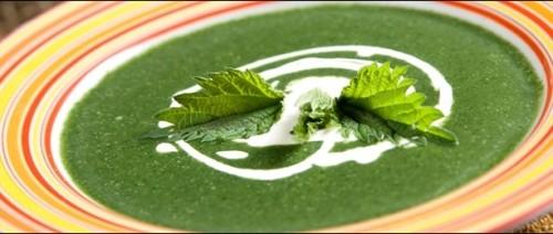 Рецепти простих і смачних страв із кропиви