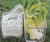 Салатний соус для пікніка