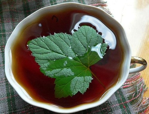 Татарський чай з медом і смородиною