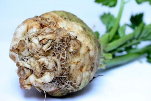 Здорове харчування: прості і смачні другі страви з кореня селери